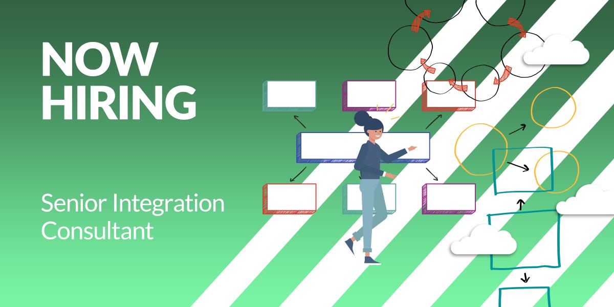 senior-integration-consultant2